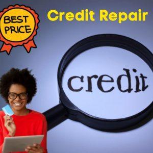 credit repair plr